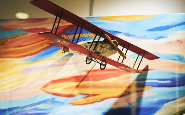 """Afternoon Flight""; Brian Travis; Intermediate, First Place; Mixed Media; Employee; Delta"