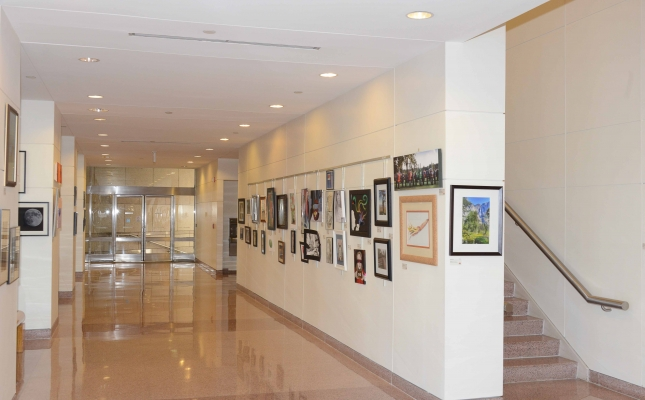 A view of the Charlotte-Mecklenburg Government Center where their 15th Annual National Arts Program® Exhibit is proudly displayed.