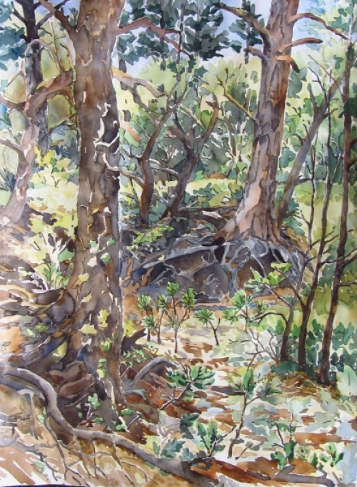 "Kristen Muench ""Root Place"" 30x22 watercolor Pinery, CO"