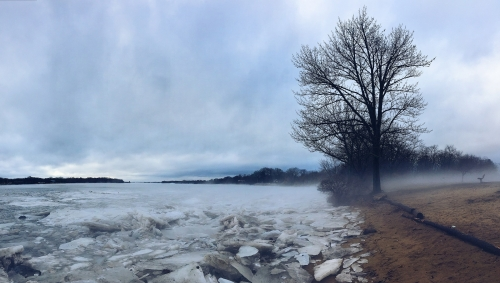 mist, ice, water, trees, cold, chill, water, river, bench, beach,