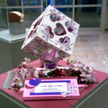 The Wedding Cube - Colors of Pinellas Exhibition - 2012