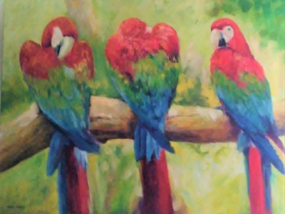 Three Tropical Macaos on a branch.